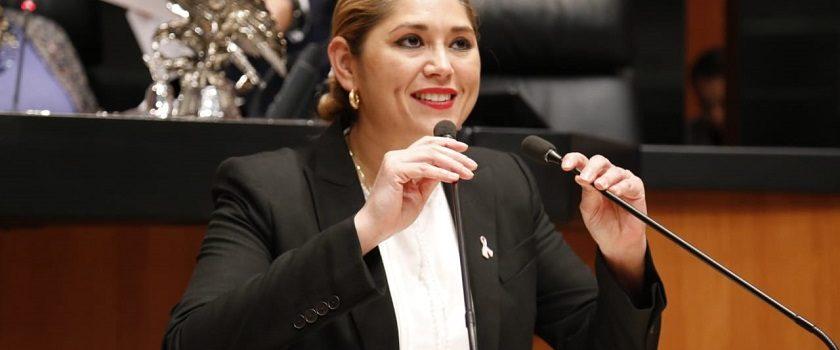 Verónica Camino lleva propuesta al Senado