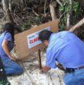 Gobierno Federal clausura importante área de la Biosfera de Ría Lagartos
