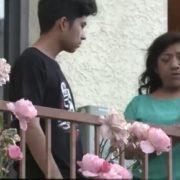 De familia yucateca, joven migrante ingresa a Universidad de Harvard