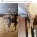 Una araña gigante devora una zarigüeya y se hace viral en Facebook