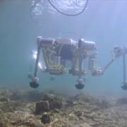 Conoce el cangrejo robot y otras tecnologías para salvar las playas y los mares