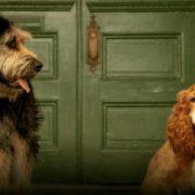 Dan a conocer las primeras imágenes del reparto canino del remake de La Dama y el Vagabundo