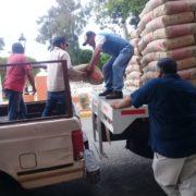 Realizan entrega de subsidios a bajo costo en Tekax