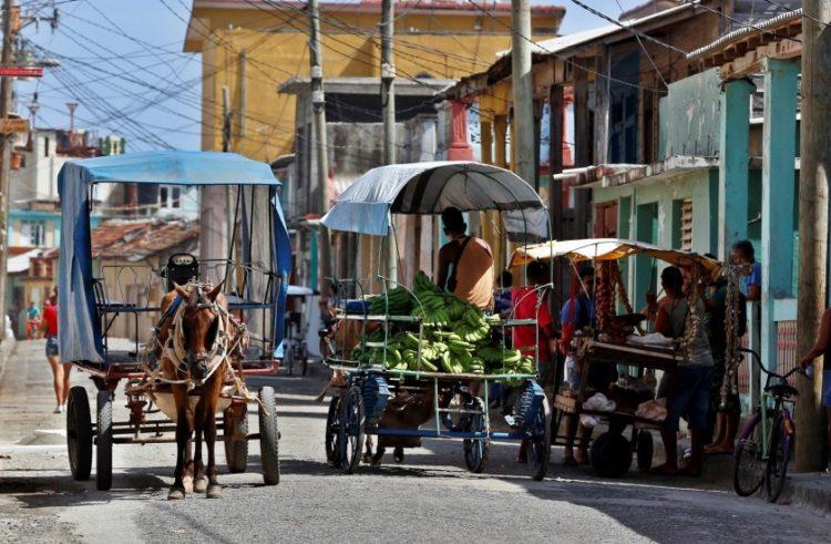 Cuba enfrenta crisis de combustible con caballos y bueyes
