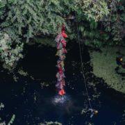 Sanean cenote de Tabi, sacan 850 kilos de basura