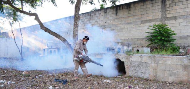 Ocupa Yucatán lugar 15 a nivel nacional en casos de dengue