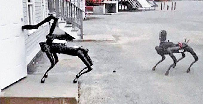 La policía estatal de Massachusetts ya prueba perros robot