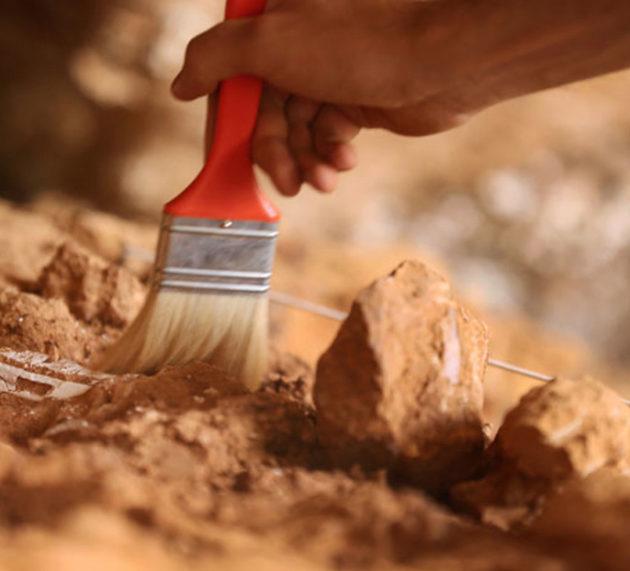 Un arqueólogo descubre por casualidad una momia de hace 2.000 años