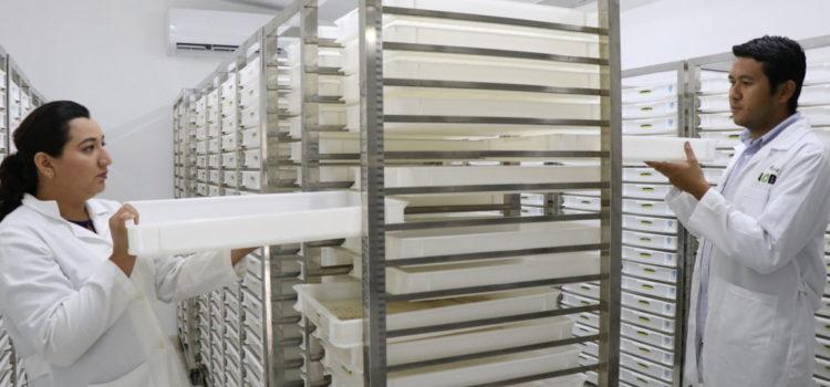 Investigadores del laboratorio de control de Aedes aegypti de la UADY participa en reunión internacional