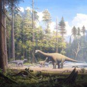 Las 5 extinciones masivas que han devastado a la Tierra, ¿nos adentramos a una más?