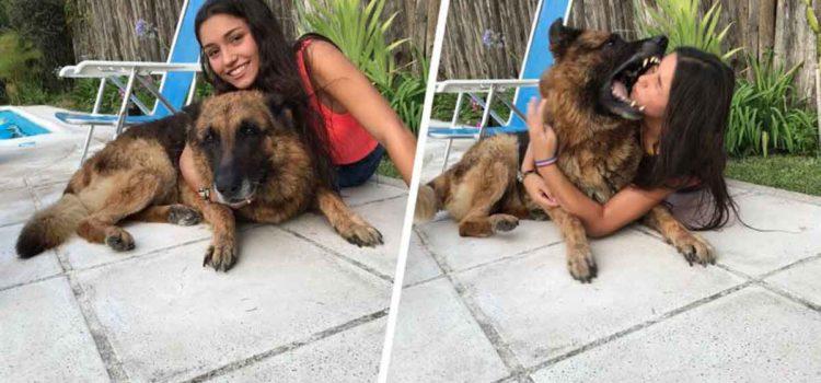 Intentó hacerse selfie con su perro, le mordió el rostro