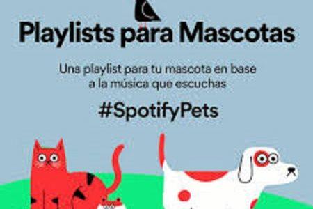 Spoty estrena su playlist para mascotas que se quedan solas en casa