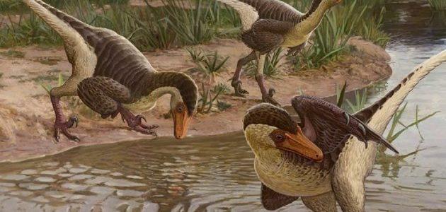 Hallan restos de dinosaurio emplumado, de los últimos en la Tierra