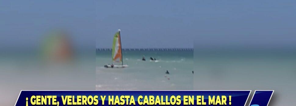 Sin temor al semáforo rojo, se meten al mar de Progreso
