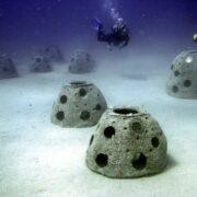 Crearán placas sub-acuáticas para honrar a víctimas del Covid-19