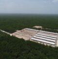 Semarnat rechaza otra granja Porcícola en Yucatán