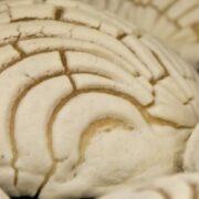 Ningún otro pan dulce en México se acerca a la cantidad de conchas que se consumen