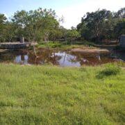 Dzibichaltún sigue inundado; permanecerá cerrado